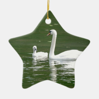 Swan and her Cygnet Ceramic Star Decoration