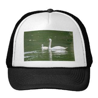 Swan and her Cygnet Trucker Hat