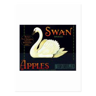 Swan Apples Post Card