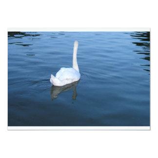 Swan at Hampton Court Palace, UK 13 Cm X 18 Cm Invitation Card