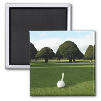 Swan at Hampton Court Palace, UK Square Magnet