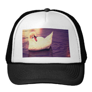 Swan at Sunset Trucker Hats