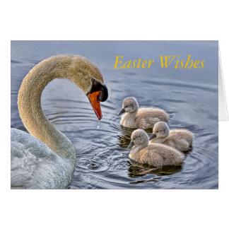 Swan & Babies Easter Card