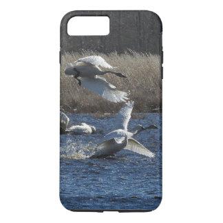 Swan Birds Animals Wildlife iPhone 7 Case