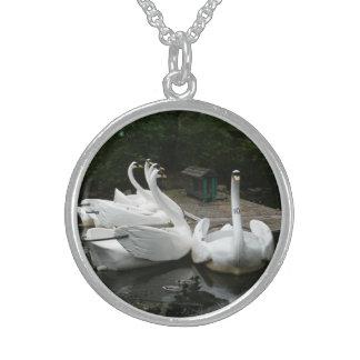 Swan Boats Jewelry