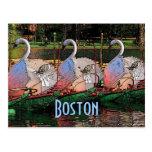 Swan Boats Postcard
