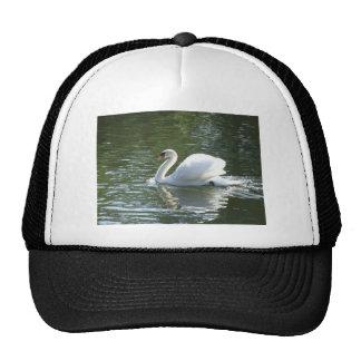 Swan Trucker Hats