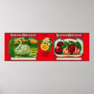Swan Cherry LabelOakland, CA Print
