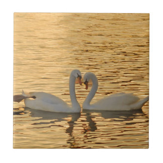 Swan Couple Meeting at Sunset Photograph Ceramic Tile