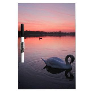 Swan Dry-Erase Board