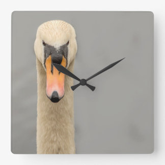 Swan face square wall clock