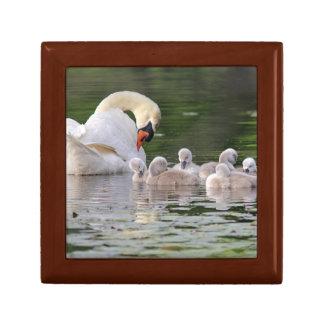 Swan Family Gift Box