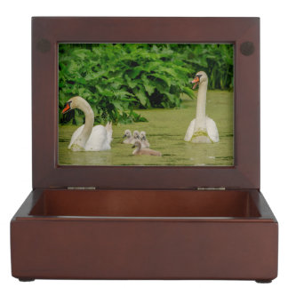 Swan Family Memory Box