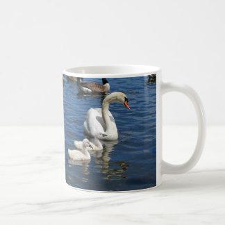 Swan Family ~ mug