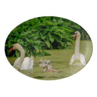 Swan Family Porcelain Serving Platter