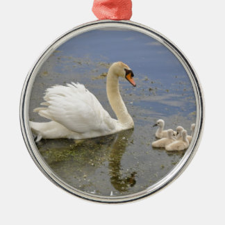 Swan Family Silver-Colored Round Decoration