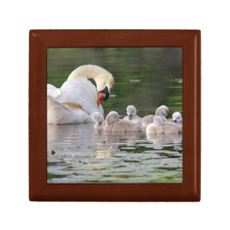 Swan Family Small Square Gift Box