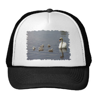 Swan Family with mom and ducklings or cygnets Cap