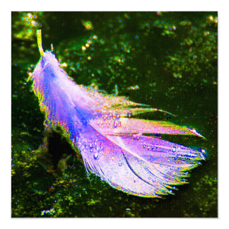 Swan feather coloured, artificially changes, 13 cm x 13 cm square invitation card