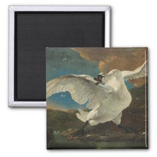 Swan fine art Asselijn Square Magnet