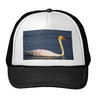 Swan Hats