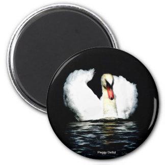 Swan in Motion Magnet
