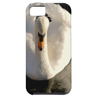 Swan iPhone 5 Covers