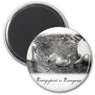 Swan Items Magnet