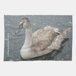 Swan Kitchen Towel