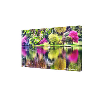 Swan Lake Canvas Art Print Gallery Wrapped Canvas