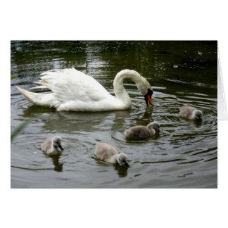 Swan Lake - Card