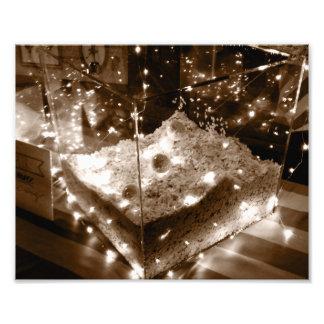 Swan Lake Light Display Photo Art