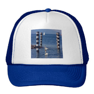 Swan Lake Mesh Hats