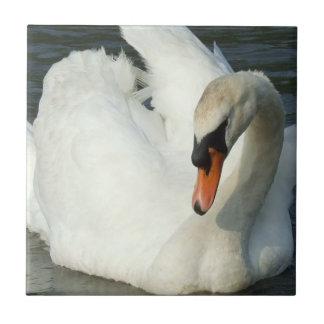 Swan Lake  Tile