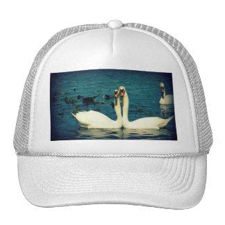 Swan Love Hat