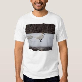 Swan Magicians Shirts