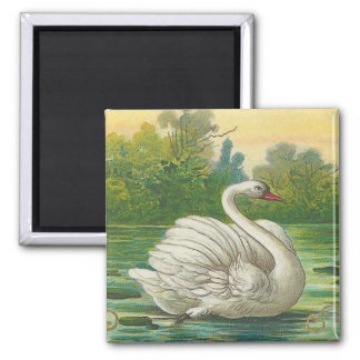 Swan 2 Inch Square Magnet