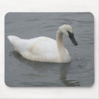 Swan Mousepads