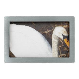 Swan on  Lake Belt Buckle