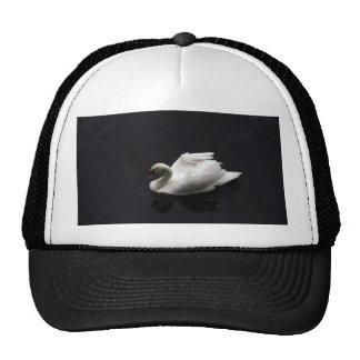 Swan on lake trucker hats