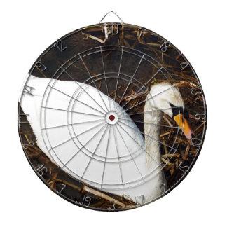 Swan on  Lake Dartboard
