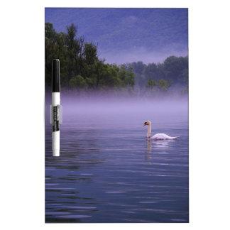 Swan on lake dry erase board