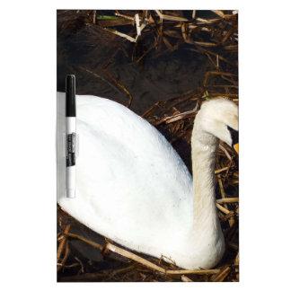 Swan on  Lake Dry Erase Whiteboards