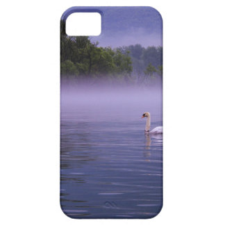 Swan on lake iPhone 5 case