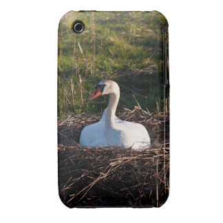 Swan on nest iPhone 3 case