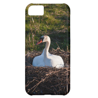 Swan on nest case for iPhone 5C