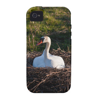Swan on nest Case-Mate iPhone 4 case