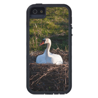 Swan on nest iPhone 5 case