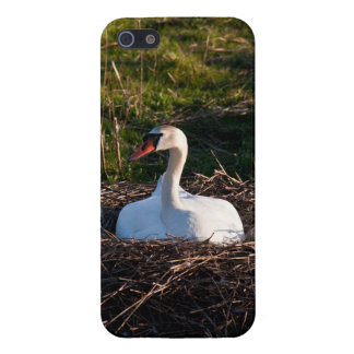 Swan on nest case for iPhone 5