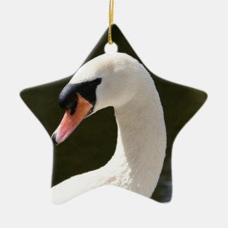Swan Portrait Christmas Ornament